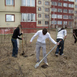 Action — planting trees